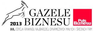 gazele2013 300x102 Referencje i Wyróżnienia