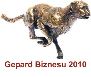 gepard2010 300x256 Referencje i Wyróżnienia